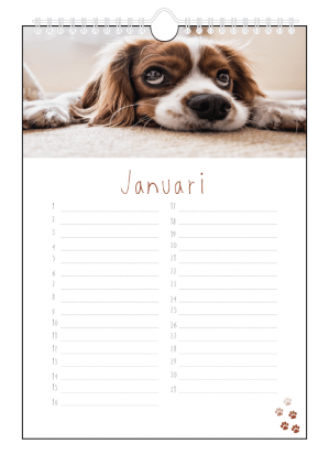 honden verjaardagskalender